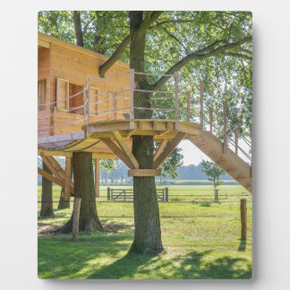 Wooden tree house in oak tree with grass plaque