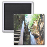 Wooden Walkway Waterfall Flume Gorge NH Magnet