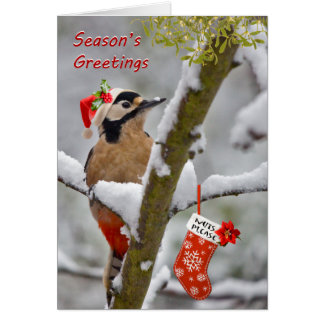 Woodie's Christmas Card