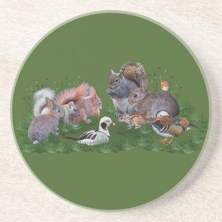 Woodland Animals Coaster