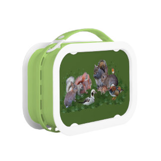 Woodland Animals Lunchbox