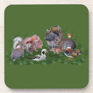 Woodland Animals Set of 6 Coasters