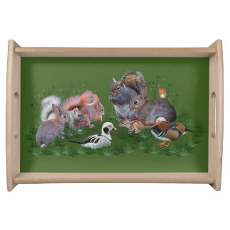 Woodland Animals Tray