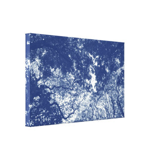 Woodland Canopy 02 - Cyanotype Effect Canvas Print