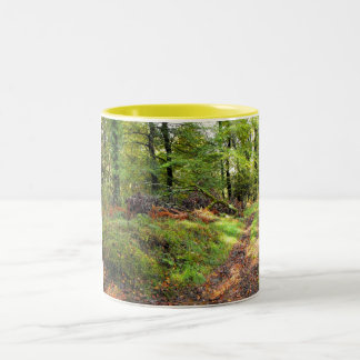 Woodland in October Two-Tone Coffee Mug
