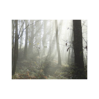 Woodland Morning Mist Canvas Print
