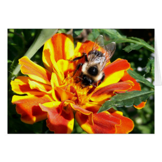 Woodland Note Card Bee