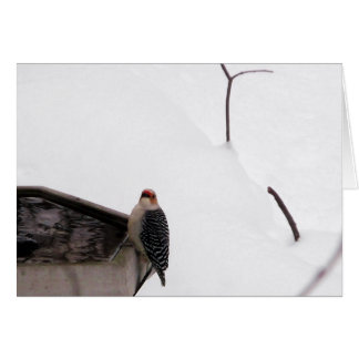 Woodland Note Card Woodpecker