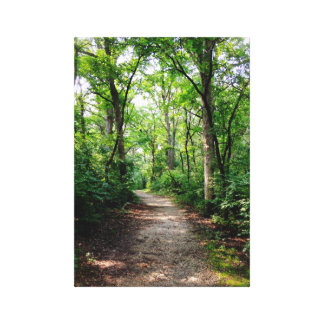 Woodland Path Canvas