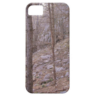 Woodland Scene iPhone 5 Cover