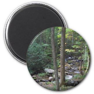 Woodland Stream Magnet