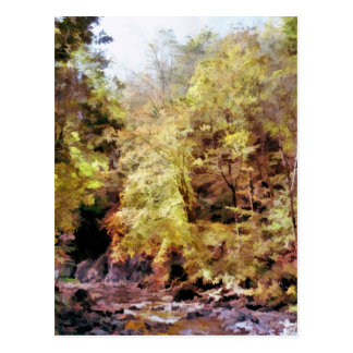 WOODLAND STREAM POSTCARD