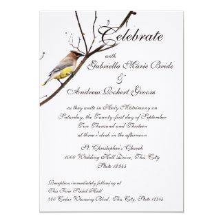 Woodland Waxwing Card