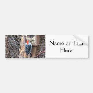 Woodpecker at Bird Feeder Bumper Sticker