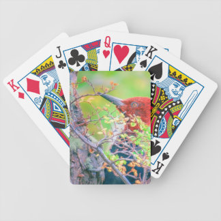 Woodpecker at Forest Pecking Bicycle Playing Cards