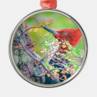 Woodpecker at Forest Pecking Metal Ornament