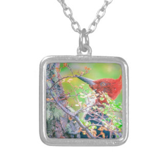 Woodpecker at Forest Pecking Silver Plated Necklace