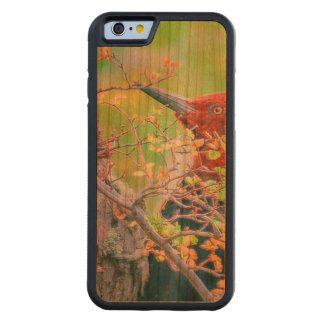 Woodpecker at Forest Pecking Tree Carved Cherry iPhone 6 Bumper Case