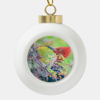 Woodpecker at Forest Pecking Tree Ceramic Ball Christmas Ornament