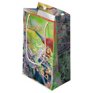 Woodpecker at Forest Pecking Tree Small Gift Bag