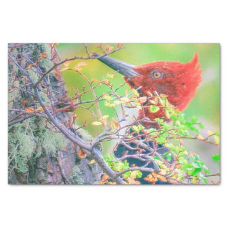 Woodpecker at Forest Pecking Tree Tissue Paper
