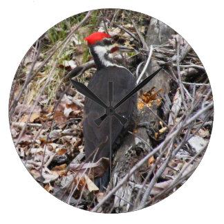 Woodpecker Bird Clock