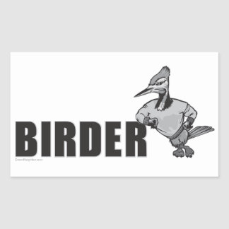 Woodpecker Bird Watching