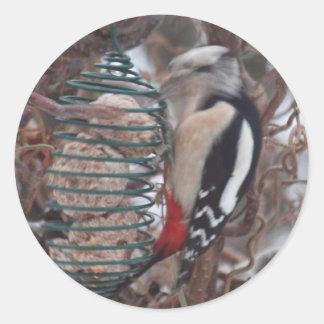 Woodpecker in Action Round Sticker