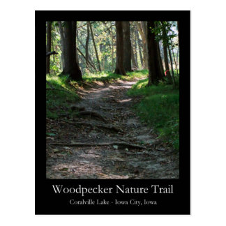 Woodpecker Nature Trail Postcard
