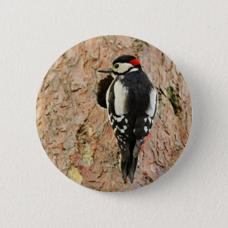 woodpecker on his tree 2 inch round button