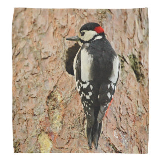 woodpecker on his tree bandana