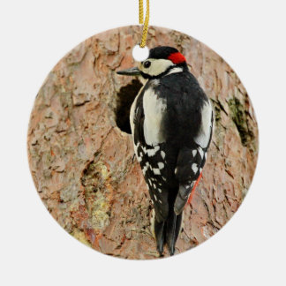 woodpecker on his tree ceramic ornament
