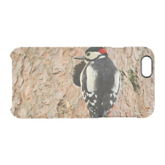 woodpecker on his tree clear iPhone 6/6S case