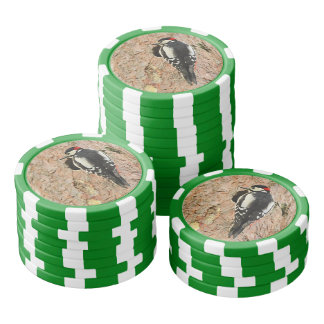 woodpecker on his tree poker chips