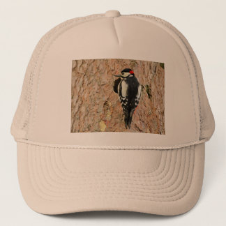 woodpecker on his tree trucker hat