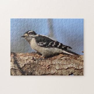 Woodpecker, Photo Puzzle. Jigsaw Puzzle