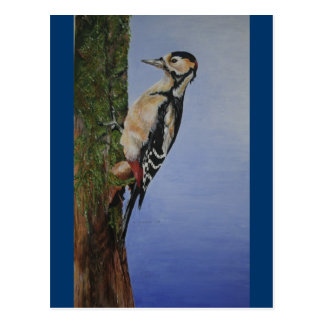 Woodpecker Products Postcard