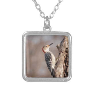 Woodpecker Silver Plated Necklace