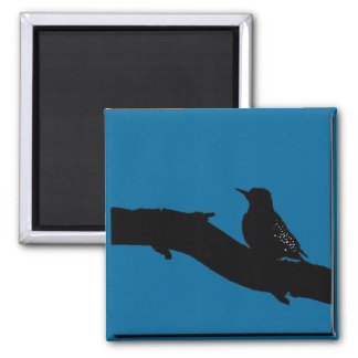Woodpecker Square Magnet