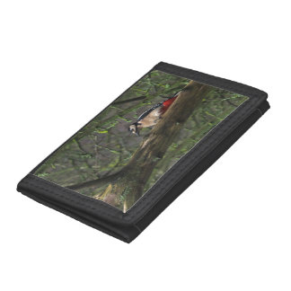 Woodpecker Wallet