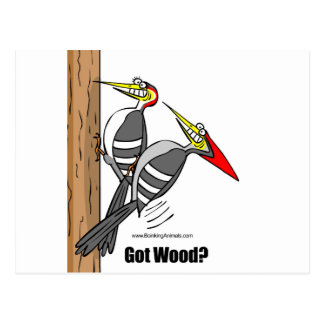 woodpeckers boinking, woodpeckers mating postcard