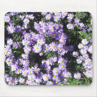 Woods Blue Fall Asters Mouse Pad