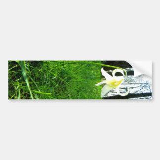 Woods Flower Bumper Sticker
