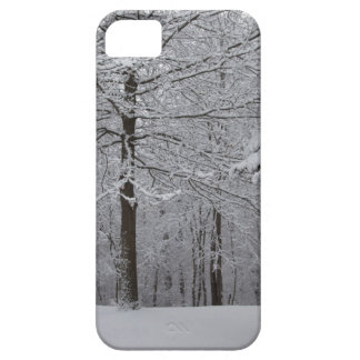 Woods View iPhone 5 Cases