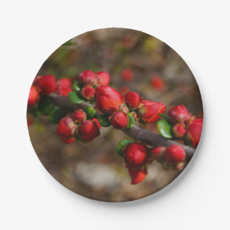 Woody Red Blooms 7 Inch Paper Plate