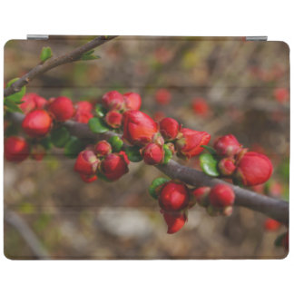 Woody Red Blooms iPad Cover