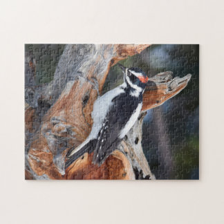 """""""Woody Woodpecker"""" in Rocky Mountain National Park Jigsaw Puzzle"""