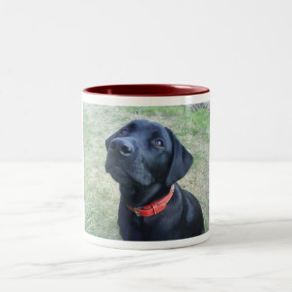 Woof Bark! Two-Tone Coffee Mug