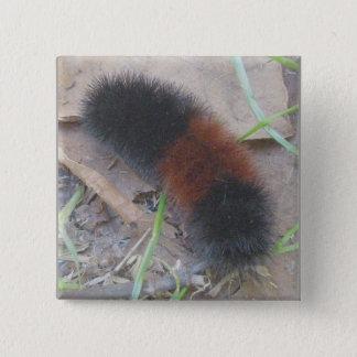 Woolly Bear Caterpillar Button