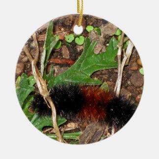 Woolly Bear Caterpillar - photograph Ceramic Ornament